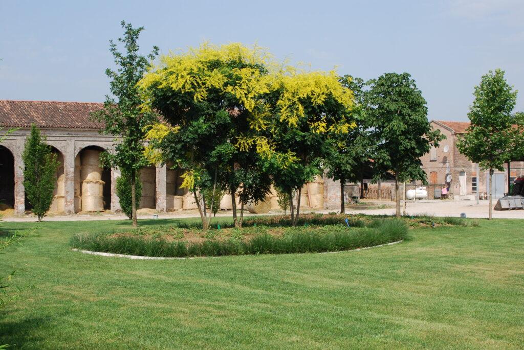 giardinaggio mantova e provincia