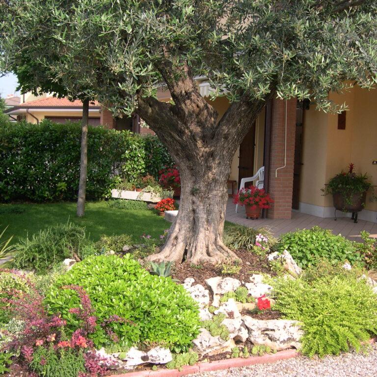Realizzazioni Area Verde Mantova e Provincia